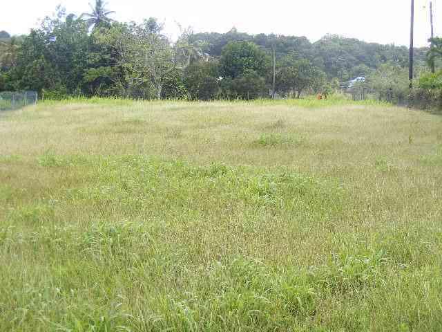 Beautiful flat rectangular land serviced 1000m