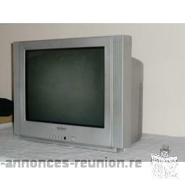 DONNE TV ET VETEMENTS