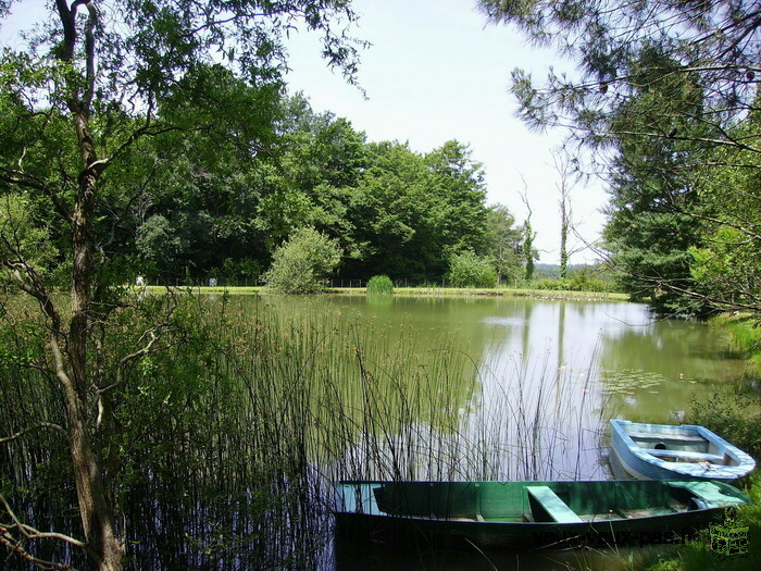 Vacances, séjour en DORDOGNE ( BERGERAC en PERIGORD)