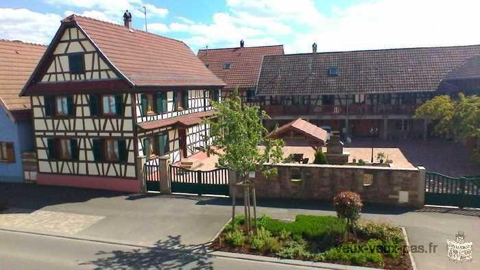 gite Krauffel 4 à 8 personnes en Alsace près d'Obernai